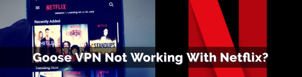 Goose VPN Not Working With Netflix_